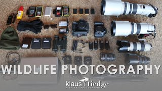 What Gear do you use?   Wildlife Photography with Klaus Tiedge