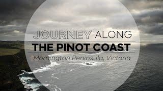 Journey along Australia's Pinot Coast in the Mornington Peninsula