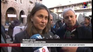 La consellera d'Agricultura, Meritxell Serret, anuncia noves actuacions per controlar el senglar