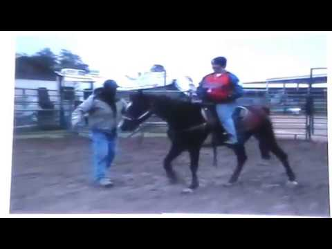 Horse Bucks off Rider or Does Rider Fall Off from lack of control? - Rick Gore Horsemanship