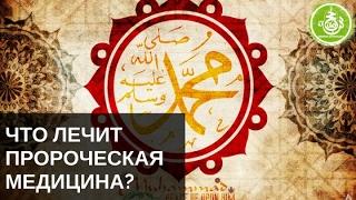 Что лечит Пророческая медицина? | Обучение Хиджаме
