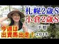 【競馬】札幌2歳S 2018 小倉2歳S予想(どちらかは波乱になるはず…) ヨーコヨソー
