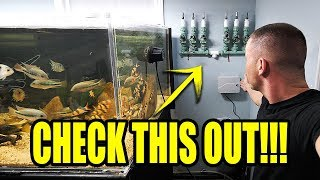 AUTOMATIC AQUARIUM WATER CHANGES... STARTED! | The King of DIY