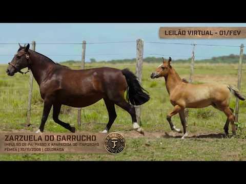 Lote 03 - Zarzuela do Garrucho