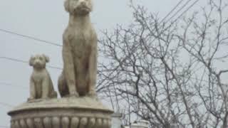 Скульптура собаки в районе собачьей балки. 16.03.2018