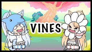 Vines Compilation || THANKS FOR 1.5K ( DESC. )