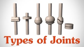 Download The 6 Types of Joints - Human Anatomy for Artists Mp3 and Videos