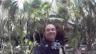 JUNGLE diving in the Yucatan- © Diver Dan -160