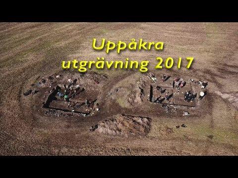 Uppåkra Utgrävning 2017
