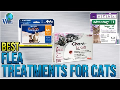 10 Best Flea Treatments for Cats 2018