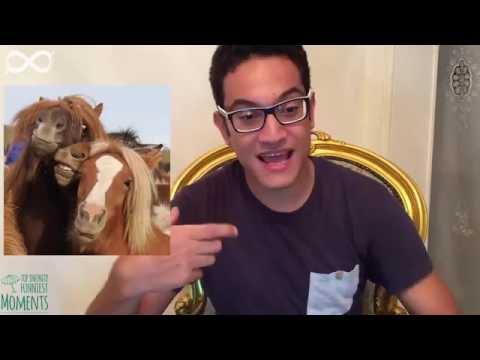 Mohamed Ahmed | الكليه ( الجزء الأول )