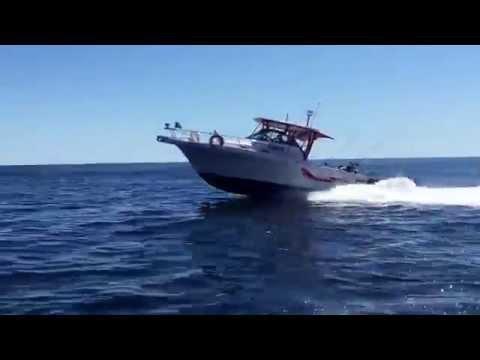 Hot Pursuit Fishing Charters Code 3 Cruising
