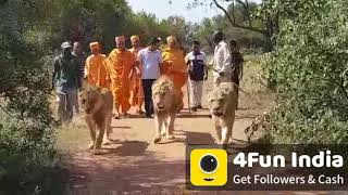हिन्दूत्व Indian Funny Videos, WhatsApp Status - 4Fun