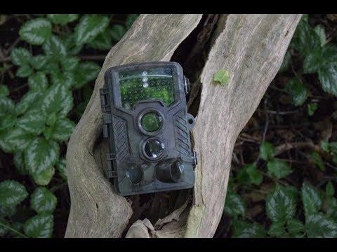 Schrter 12 MP Wildkamera Full HD S camo 32 GB Berger Jagd ...