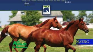 AGam in Kansas - Free Stallion Castration at K-State in April - March 9, 2017