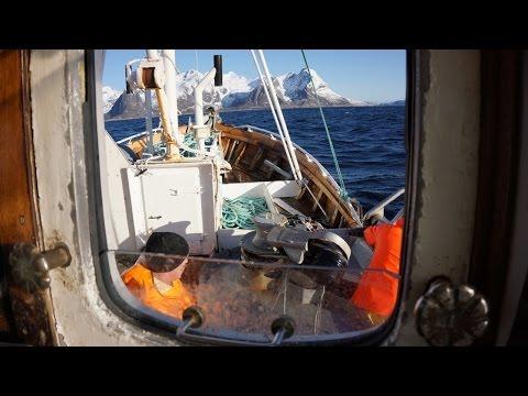 Breisund - Lofoten torskefiske utenfor Hamnøy