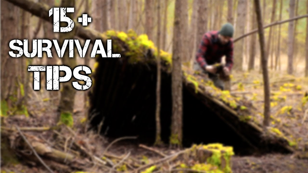 Download 15 Wilderness Bushcraft Skills For Surviving 100 Days Alone in the Wild | Brought to you by History