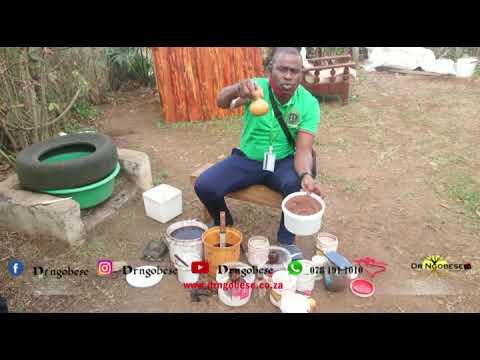 Download Dr Ngobese ukhuluma ngezigubhu