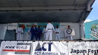 Japan Festival Judo Video 2