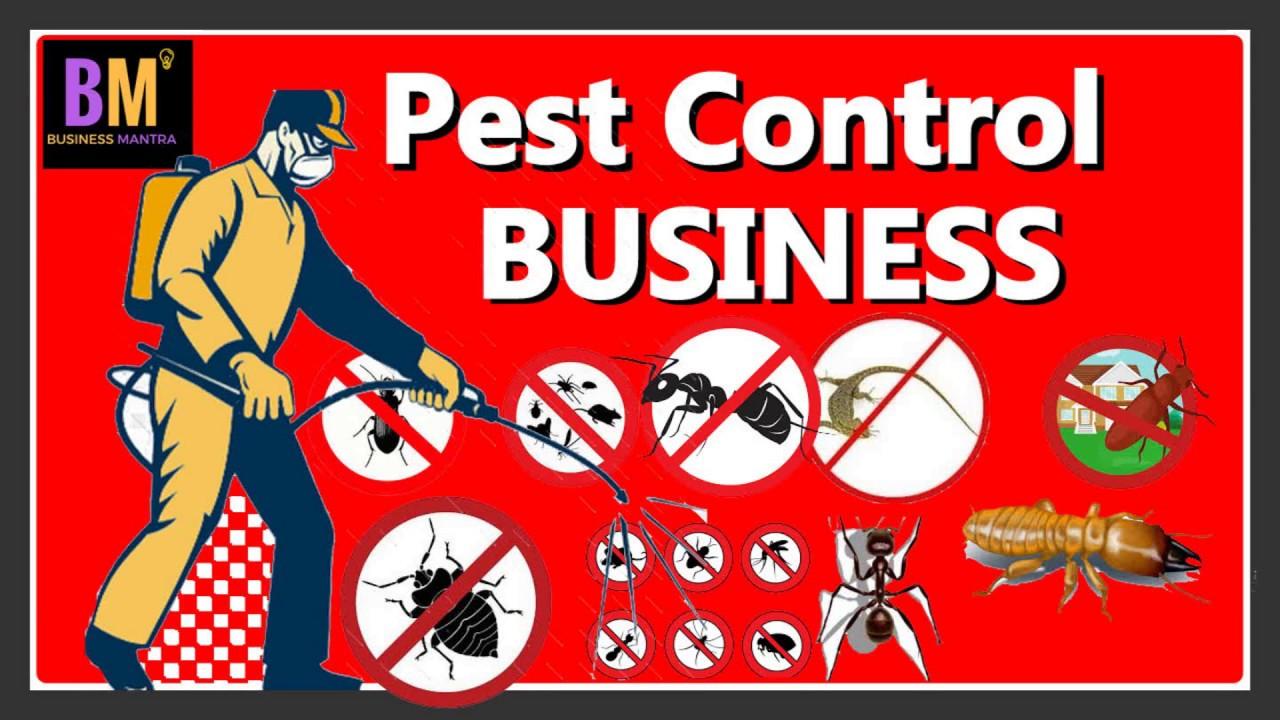 Pest Control Business : कम पैसों में शुरू करें प्रोफिटेबल बिजनेस : Business Mantra