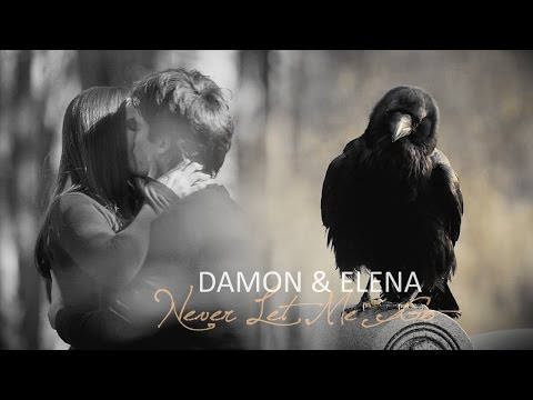 Damon & Elena | Never Let Me Go