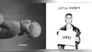 Sorry For Breathin Mashup of Justin Bieber Ariana Grande.mp3