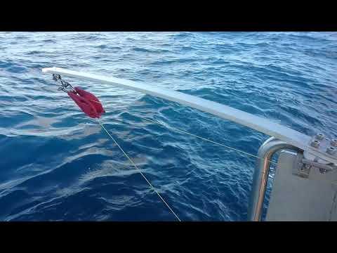 Electric Fishing Reel Test Run