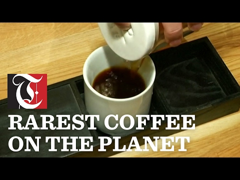 Rarest Coffee on the Planet: NYC cafe serves up $18 cup of coffee