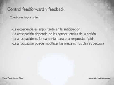 TEMA 2 2 Control feedforward y feedback