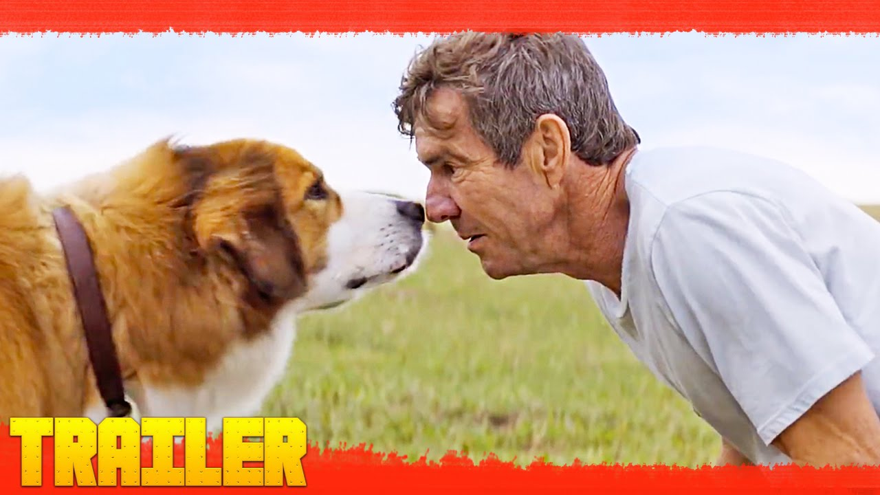 Watch A Dog S Purpose Movie