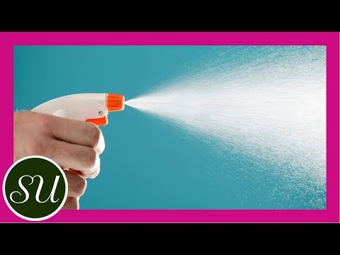 diy-non-toxic-flea-spray-|-natural-pet-care-with-essential-oils