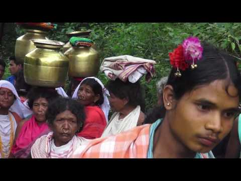 Niyamgiri : The Cuckoos Stopped Singing (Full HD Final Version)