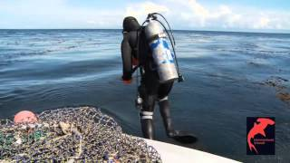 Careers in Diving - Sea Urchin Diving - Interview with diver Chris Nelson