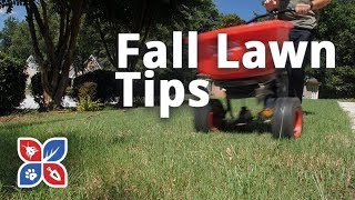 Do My Own Lawn Care - Fall Lawn Tip