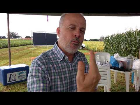 Pesquisador demonstra efeitos da pulverização correta de agroquímicos