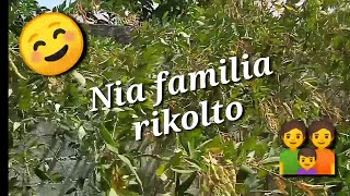 Nia familia rikolto! #Esperanto #Venezuela #EsperantoLives