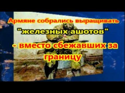 Армяне собрались выращивать