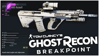 Assault Level 10: AUG Assault vs the Standard AUG! - Ghost Recon Breakpoint