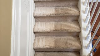 Dirty carpet cleaning challenge : Customer didn't think we could save the carpets from being replace