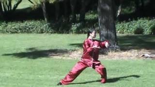 Liu Yu Tai Chi Chen style Mp3