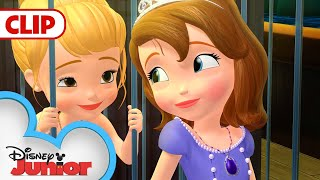 Mermaid Rescue | Sofia The First | @Disney Junior