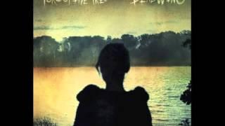 Porcupine Tree -  She
