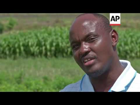 Farmers look to new technology to increase their yields