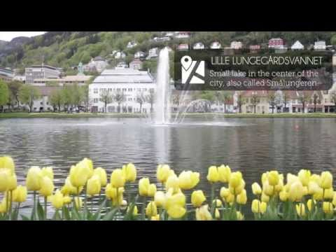 Visit Bergen | Bergen Travel Guide Video | Video Guía de Via