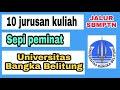 Jurusan kuliah sepi peminat Universitas Bangka belitung info sbmptn 2021
