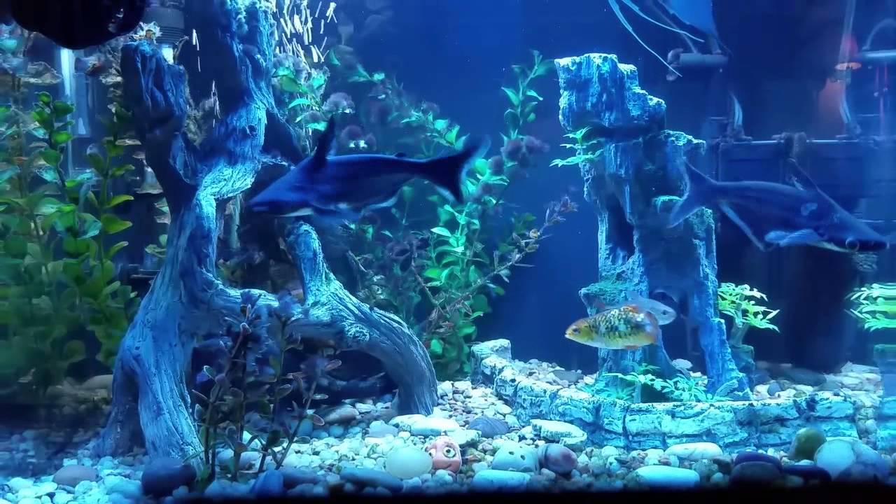 Aquarium ornaments mangrove tree roots and cave with for Aquarium tree root decoration