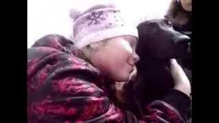 Мы ждем вас (приют для бездомных животных