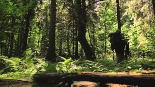 Polsat Viasat Nature - Adam Wajrak