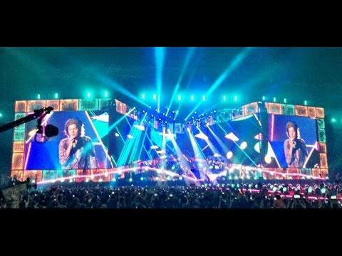 One Direction- concerto del 28 giugno 2014- San Siro (Milano)