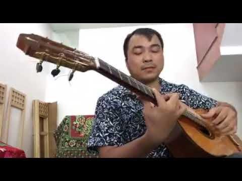 Guitare Masaki Sakurai Maestro RF - $ 9000 USA , Dây Hanabach (Gecmani)